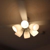 天井に取り付けられた照明器具・シーリングファン