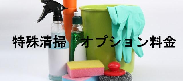 清掃用品 バケツ・各種洗剤